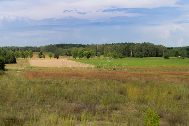 Plowed field in late summer time with trees behind and blue sky.  stock image
