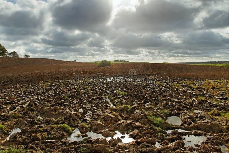 Plowed field. royalty free stock image