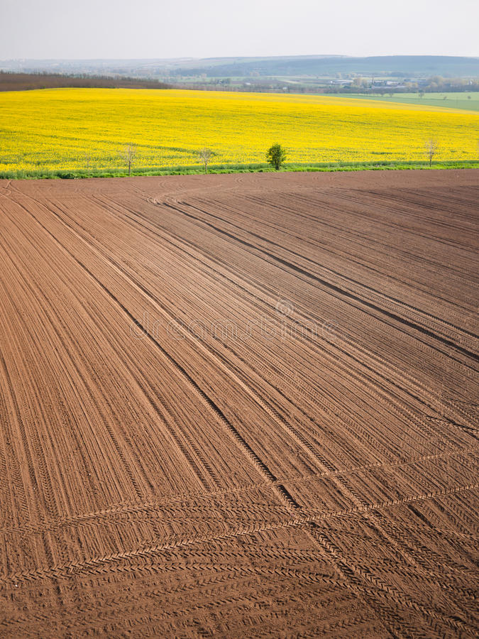 Plowed field in spring-time with tractor tyre track. High angle view on the tractor traces on the machined field stock images