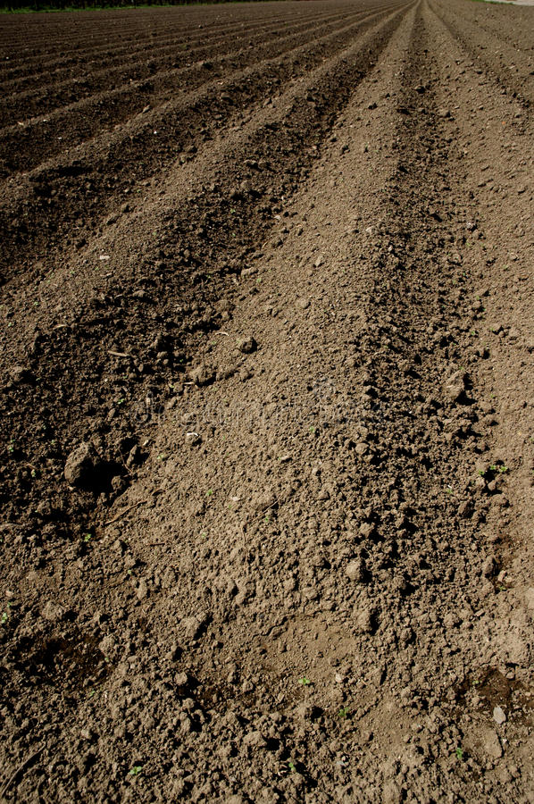 Plowed ground stock images