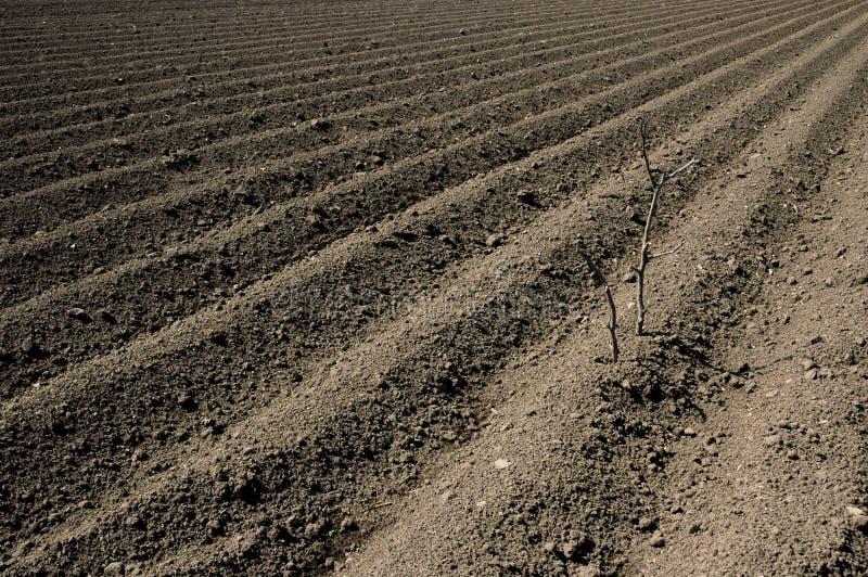 Plowed ground royalty free stock image