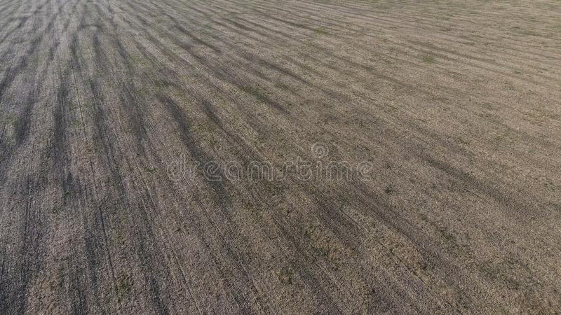plowed half agricultural field after the harvest of oats. close-up photo in summer royalty free stock photos