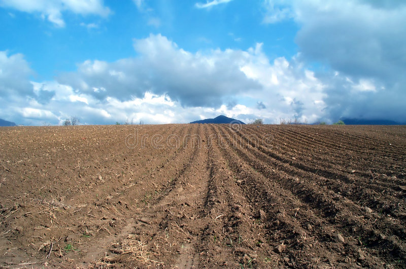 Plowed land stock photography