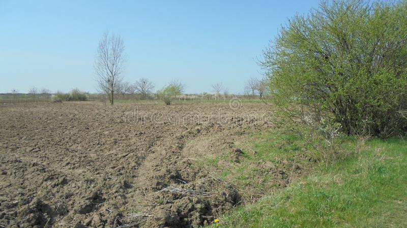 Plowed land for a new crop. stock photos