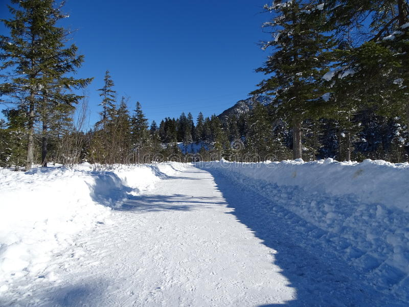 Plowed road in Isartal. In the photo is plowed road near Wallgau. We can see a thick layer of snow, a rare conifer forest and mountains in the background stock images