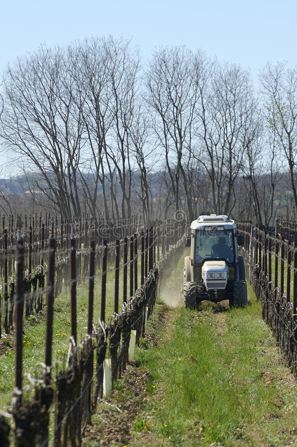 Plowing. Castegnato (Bs), Franciacorta,Italy, the plowing in a vineyard royalty free stock image
