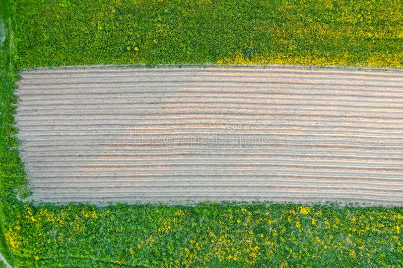 Plowing land furrows for planting agronomical plants among the countryside of grass and meadows trees, aerial view from above stock photos