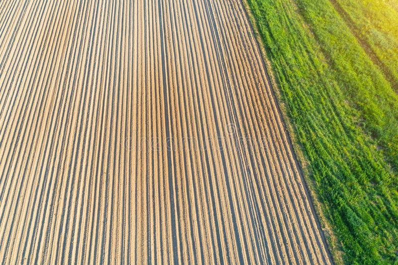 Plowing land furrows for planting agronomical plants among the countryside of grass and meadows trees, aerial view from above.  stock image