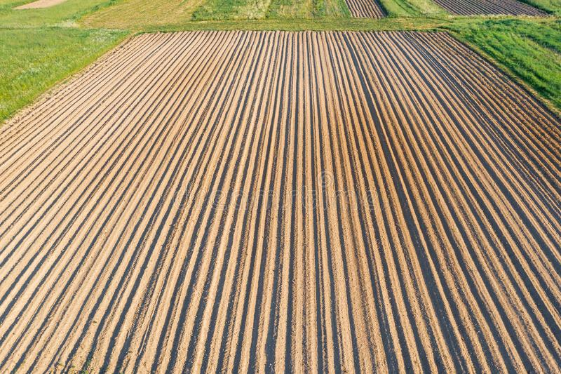 Plowing land furrows for planting agronomical plants among the countryside of grass and meadows trees, aerial view from above.  royalty free stock image