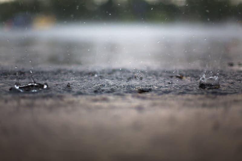 Pluśnięcie Raindrop zdjęcia royalty free
