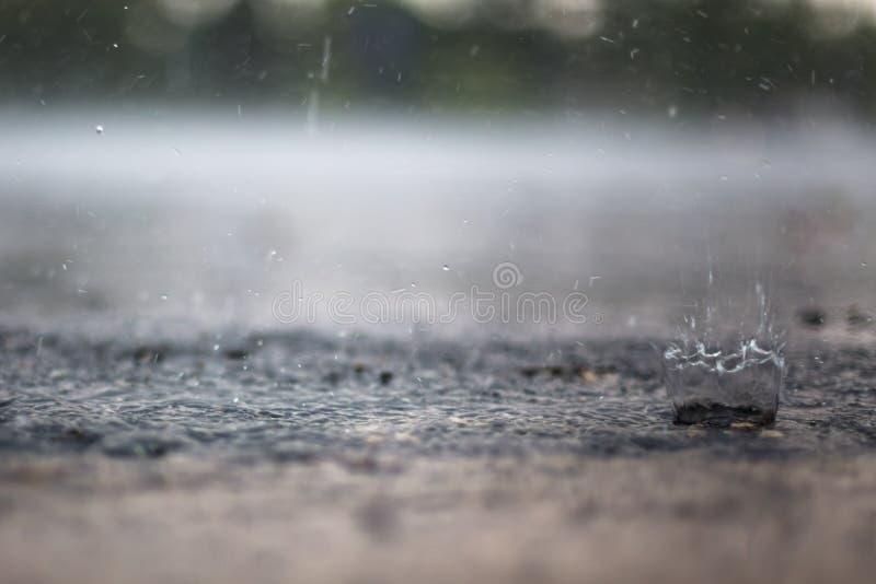 Pluśnięcie Raindrop zdjęcie stock