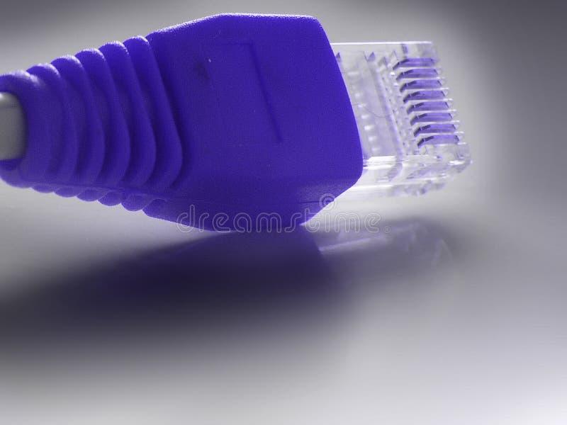 plugin rj45 zbliżenie sieci zdjęcie stock