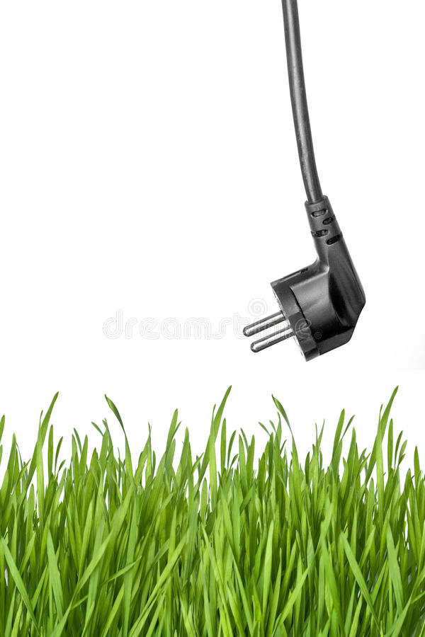 Plugue de potência preta e grama verde imagem de stock royalty free