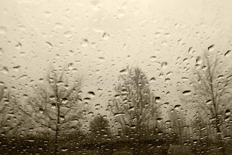 Pluie photo stock