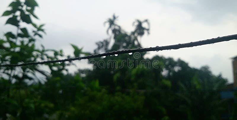 Pluie images libres de droits