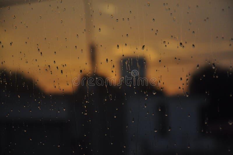 Pluie d'été photographie stock libre de droits