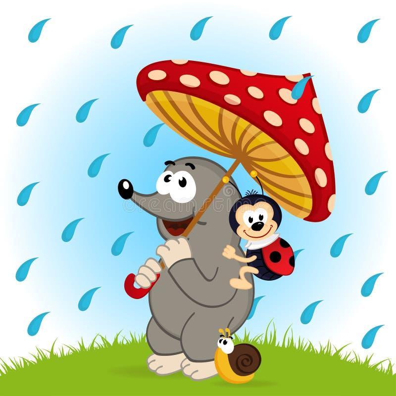 Pluie d'escargot de coccinelle de taupe illustration stock