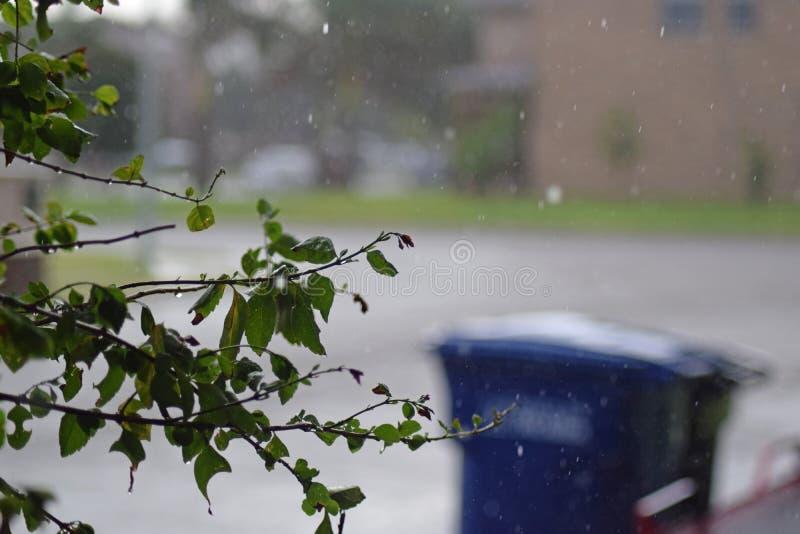 Pluie dans les banlieues image libre de droits