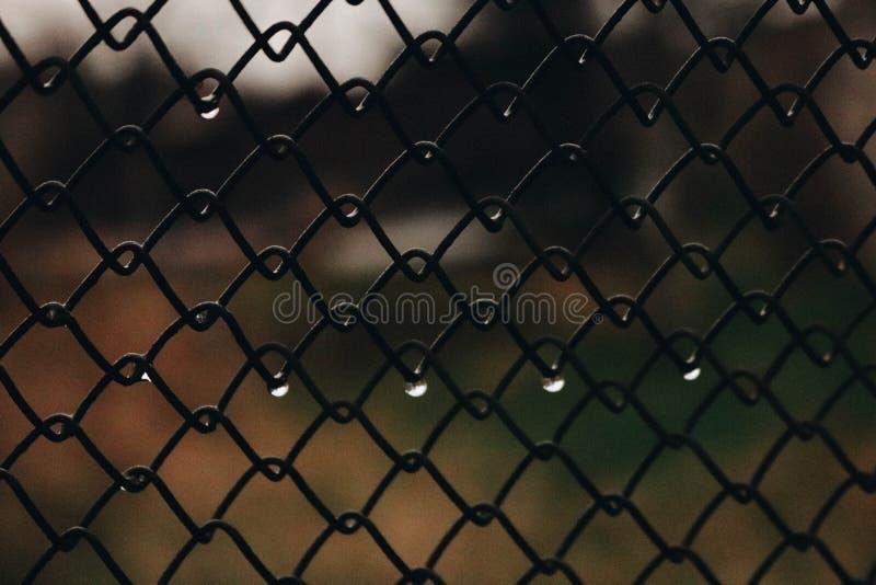 Pluie de baisse triste images libres de droits
