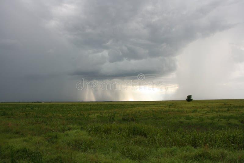 Pluie sur les plaines photographie stock
