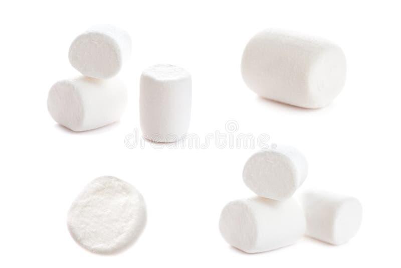 Pluizige witte heemstmacro over witte achtergrond H stock fotografie