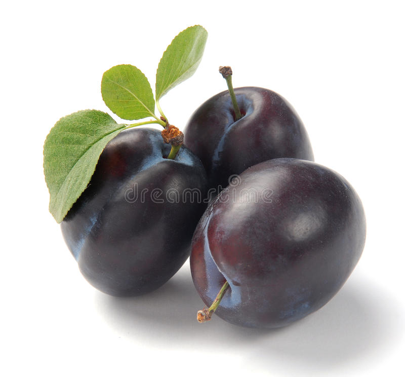 Download Plum stock image. Image of ripe, fresh, plum, diet, smooth - 10477539