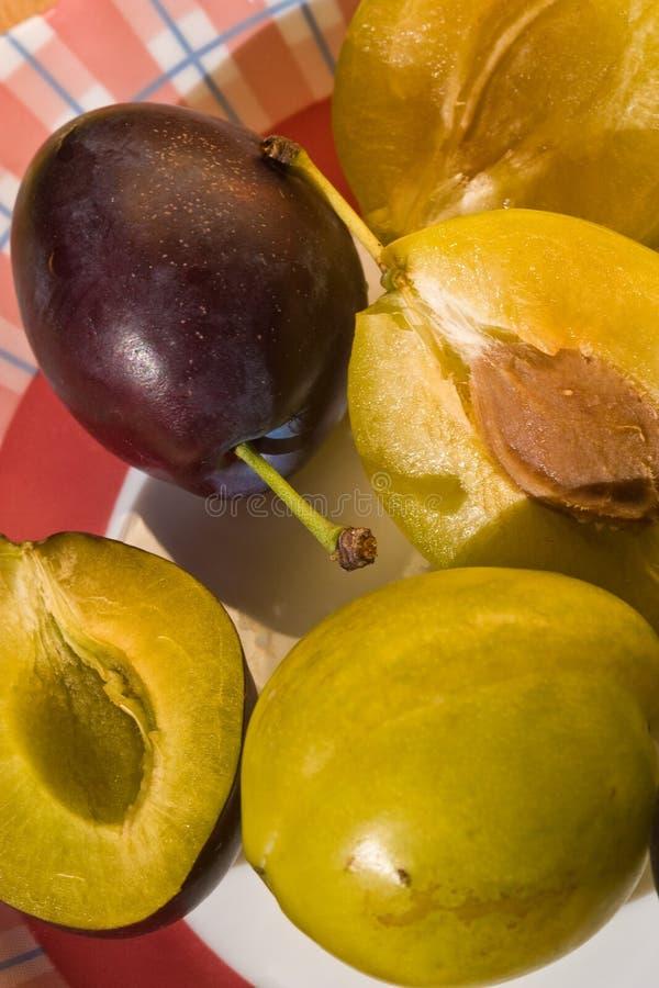Download Plum stock photo. Image of sliced, ripe, food, fresh - 14861454
