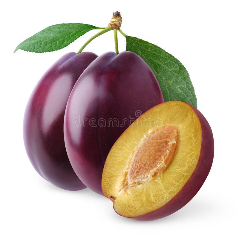 Free Plum Royalty Free Stock Photography - 16715167