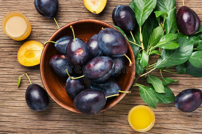 Plum alcoholic beverage stock photo