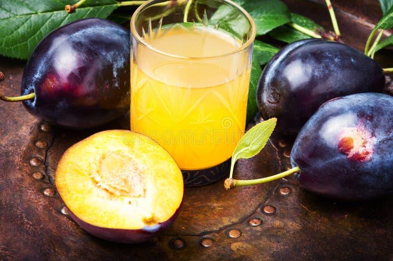 Plum alcoholic drink. Traditional alcoholic drink from the autumn plum harvest.Serbian rakia slivovitz royalty free stock photography