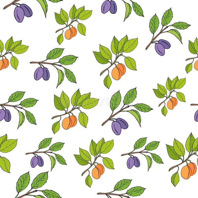 Plum and apricot seamless pattern stock illustration