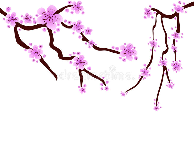 Plum blossom stock illustration