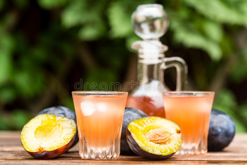Plum brandy or slivovitz with fresh ripe plums. Close up plum liqueur or slivovitz, plum rakia with fresh and tasty plums in wooden bowl on wooden background royalty free stock image