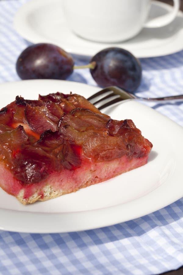 Download Plum Cake Royalty Free Stock Image - Image: 20613746