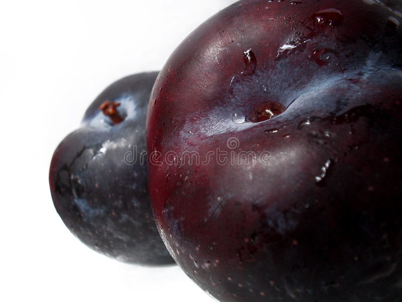 Download Plum Deux Stock Photography - Image: 191982