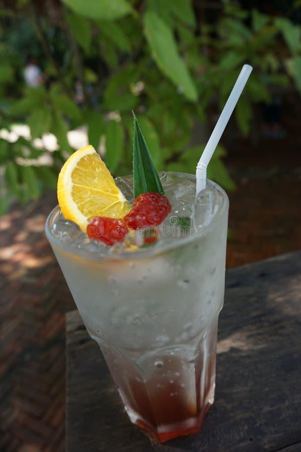 Plum lime soda op de boerderij Sawanobligin, chiangrai, Thailand stock afbeeldingen