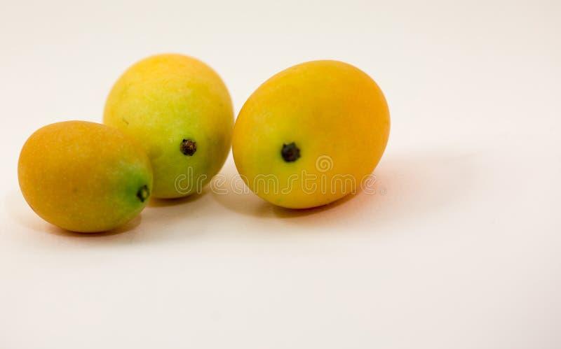 Plum Mango isolerade vit, frukten har en sur anstrykning royaltyfria foton
