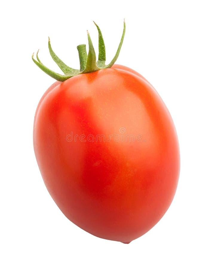 Plum Tomato lizenzfreie stockfotografie