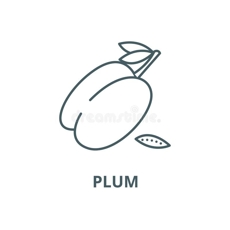Plum vector line icon, linear concept, outline sign, symbol royalty free illustration