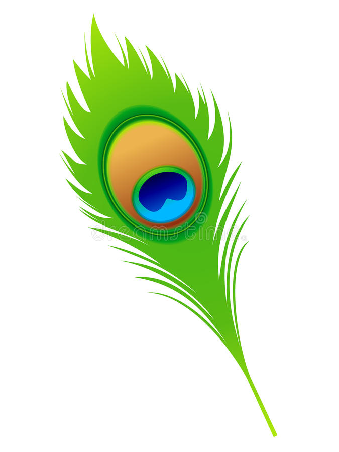 Pluma artística abstracta del pavo real stock de ilustración