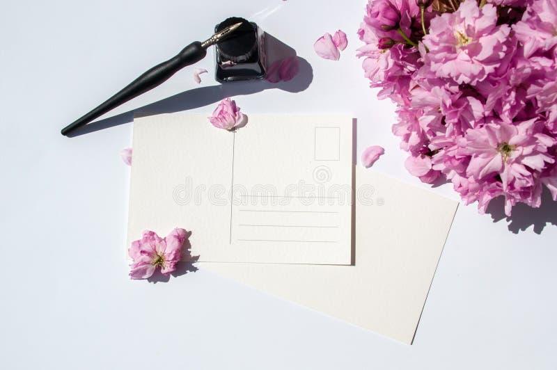 Pluma de la tinta y botella de tinta viejas en el fondo blanco Pluma de la caligraf?a del vintage y botella de tinta Ramita de la foto de archivo libre de regalías
