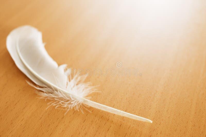 Pluma de pájaro en la tabla imágenes de archivo libres de regalías