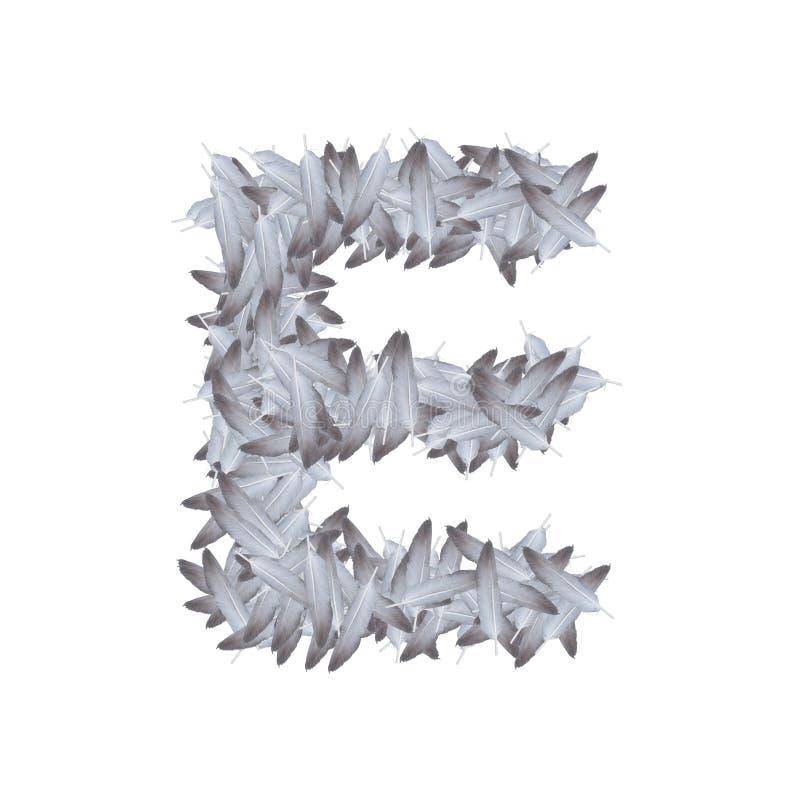 Pluma del alfabeto de la letra determinada E, ejemplo del ala del pájaro stock de ilustración