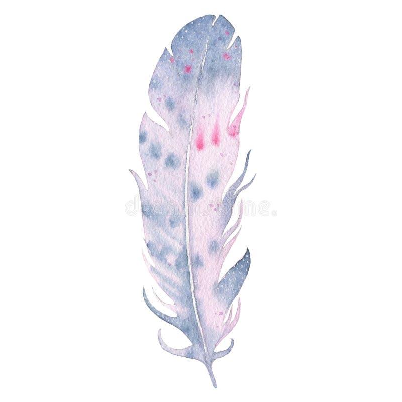Pluma dibujada mano del boho de la acuarela aislada en el fondo blanco libre illustration