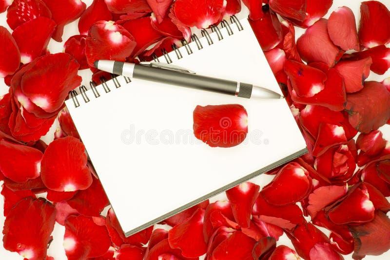 Pluma en el cuaderno abierto y los pétalos color de rosa imagen de archivo libre de regalías