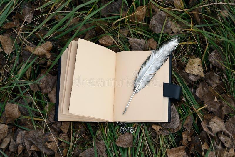 Pluma mágica del libro y de la plata imagen de archivo libre de regalías