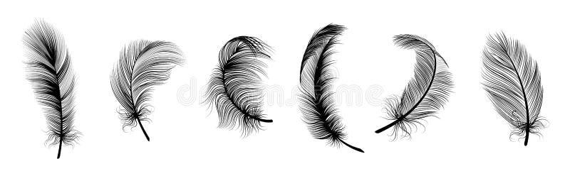 Pluma negra. Trazado manual de arte vintage plumas realistas para el conjunto de vectores aislados detallados libre illustration