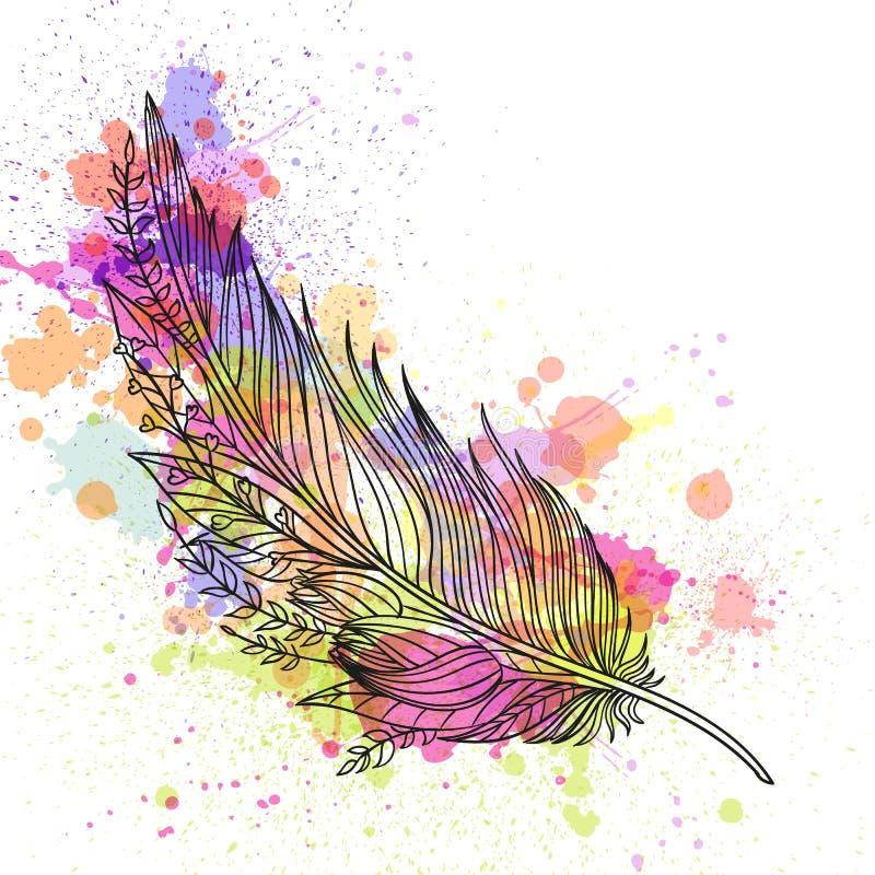Pluma ornamental abstracta libre illustration