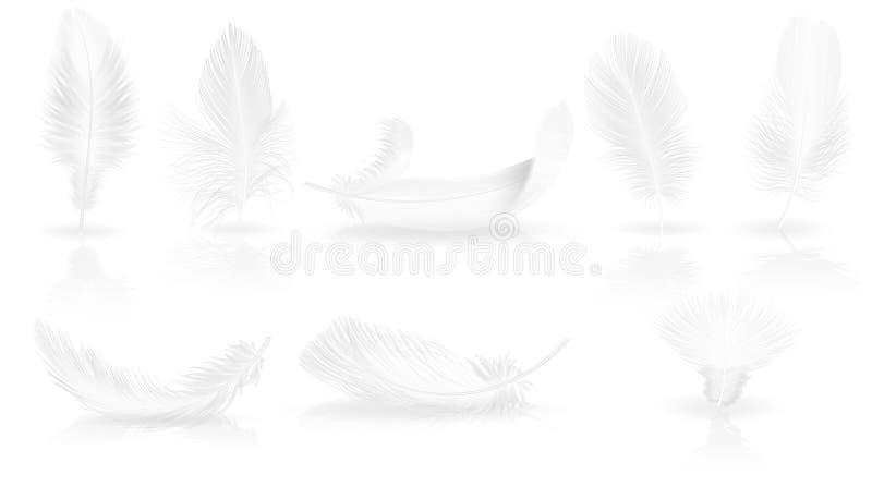 Plumas blancas suaves realistas en fondo brillante Ejemplo del vector del sistema de la pluma del pájaro que cae blanco libre illustration