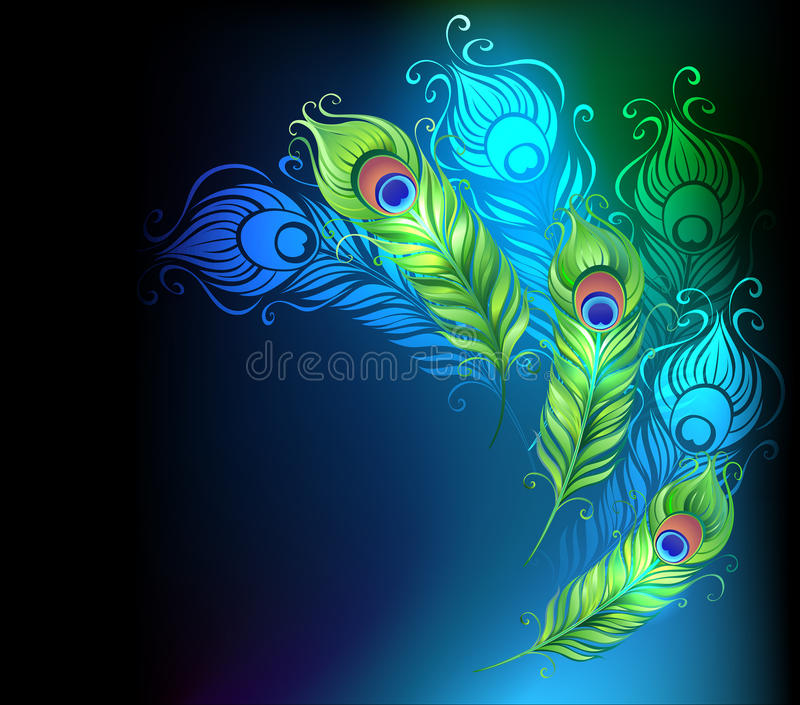 Plumas brillantes del pavo real stock de ilustración